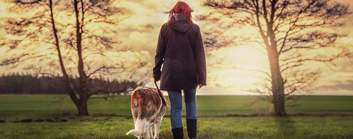 Mens & dier met elkaar verbonden